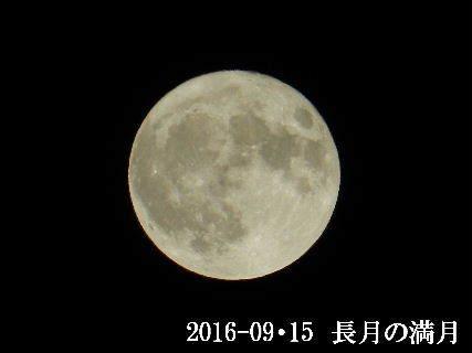 2019-09・15 長月の満月・・・ (1).JPG