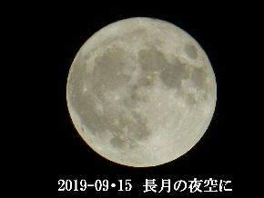 2019-09・15 長月の満月・・・ (2).JPG
