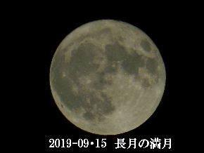 2019-09・15 長月の満月・・・ (3).JPG