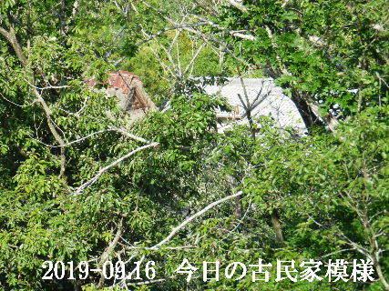 2019-09・16 今日の古民家模様.JPG