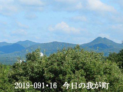 2019-09・16 今日の我が町.JPG