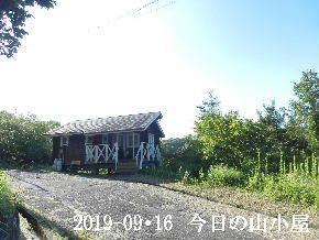 2019-09・16 今日の里山模様・・・ (2).JPG