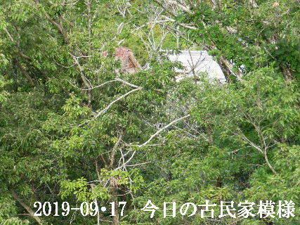2019-09・17 今日の古民家模様.JPG