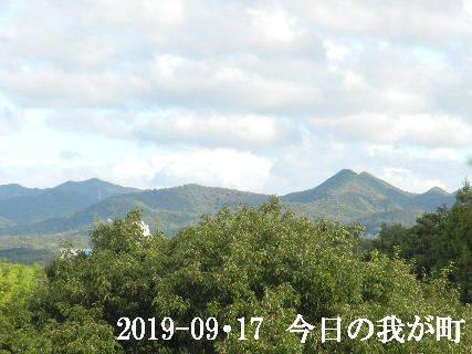 2019-09・17 今日の我が町.JPG