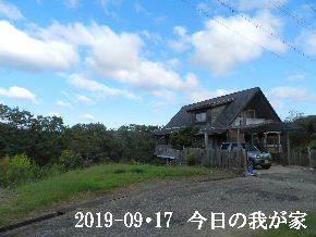 2019-09・17 今日の里山模様・・・ (1).JPG