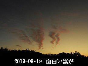 2019-09・19 里の夕暮れ時・・・ (3).JPG