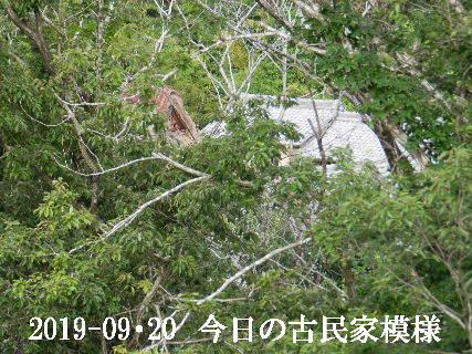 2019-09・20 今日の古民家模様.JPG