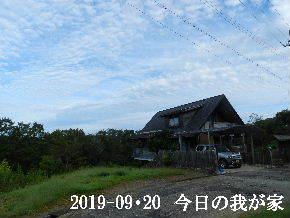 2019-09・20 今日の里山模様・・・ (1).JPG