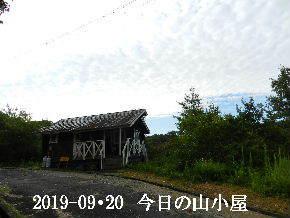 2019-09・20 今日の里山模様・・・ (2).JPG