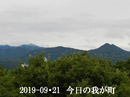 2019-09・21 今日の我が町.JPG