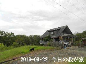 2019-09・22 今日の里山模様・・・ (1).JPG