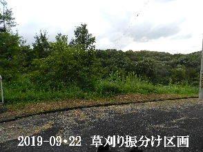 2019-09・22 草刈りの振分け区画 (11).JPG