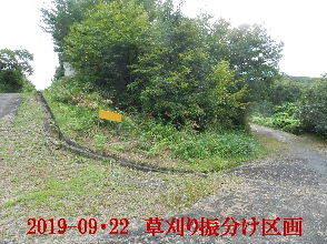 2019-09・22 草刈りの振分け区画 (3).JPG