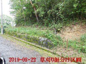 2019-09・22 草刈りの振分け区画 (5).JPG