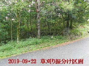 2019-09・22 草刈りの振分け区画 (8).JPG