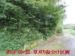 2019-09・22 草刈りの振分け区画 (9).JPG