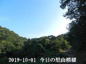 2019-10・01 今日の里山模様・・・ (6).JPG
