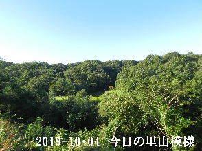 2019-10・04 今日の里山模様・・・ (3).JPG