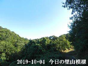 2019-10・04 今日の里山模様・・・ (6).JPG