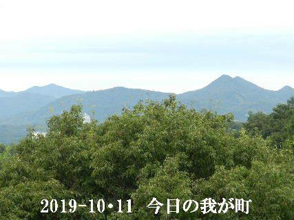 2019-10・11 今日の我が町.JPG