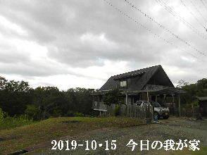 2019-10・15 今日の里山模様・・・ (1).JPG
