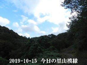 2019-10・15 今日の里山模様・・・ (6).JPG