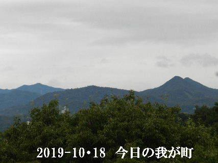 2019-10・18 今日の我が町.JPG