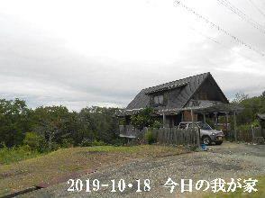 2019-10・18 今日の里山模様・・・ (1).JPG