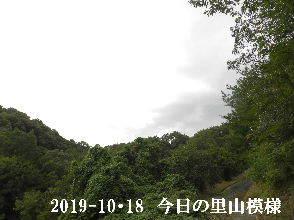 2019-10・18 今日の里山模様・・・ (6).JPG