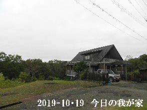 2019-10・19 今日の里山模様・・・ (1).JPG