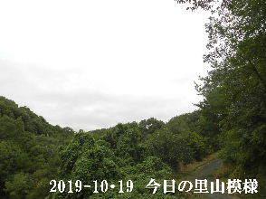 2019-10・19 今日の里山模様・・・ (6).JPG