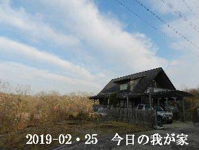 2019―02・25 今日の里山は・・・ (1).JPG